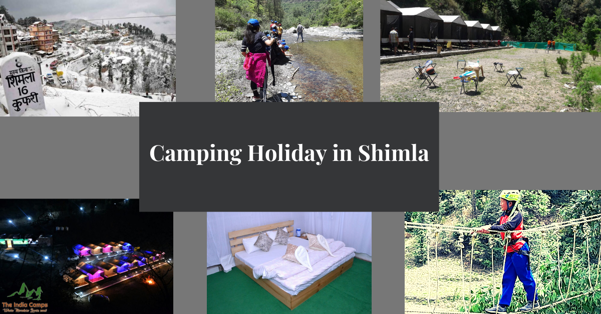 Camping Holiday in Shimla